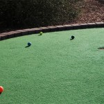 at-home-putting-green